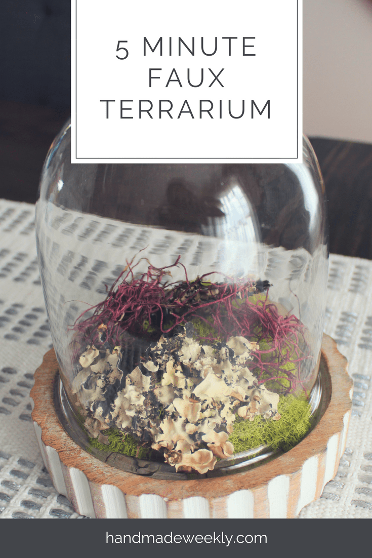 5 minute diy faux terrarium