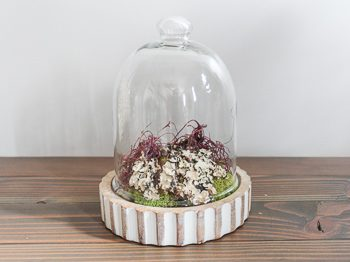simple faux terrarium home decor