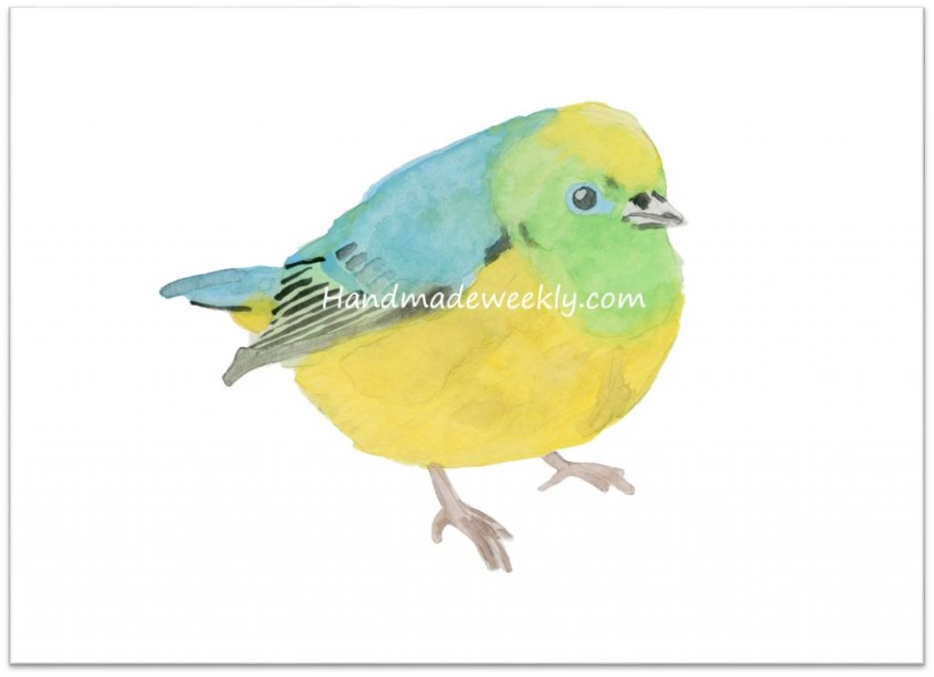 watercolor bird free download