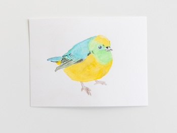 Watercolor Bird print free download