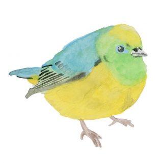 free download watercolor bird print