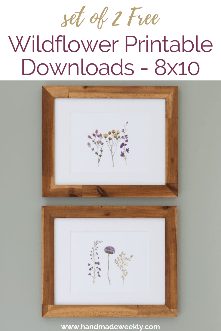 picture about Printable Art Free called Fastened of 2 Cost-free Wildflower Botanical Printables - Home made Weekly